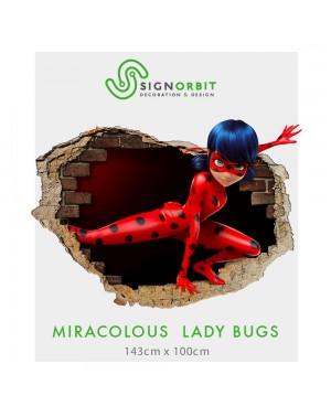 MIRACULOUS LADYBUG -001...