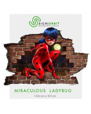 MIRACULOUS LADYBUG - 002...