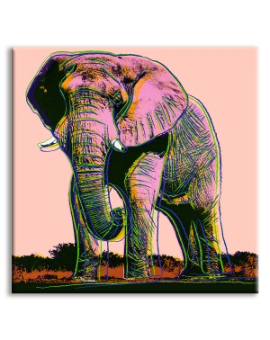 African Elephant - Andy...